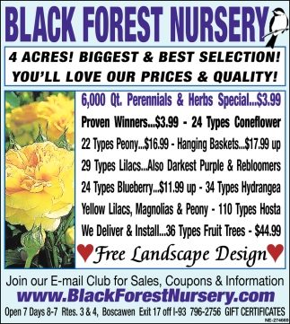 You'll Love Our Prices