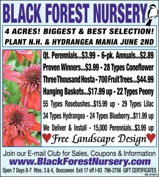 Free Landscape Design Black Forest