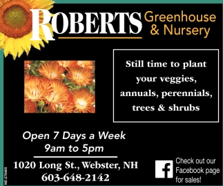 Still Time To Plant Your Veggies, Annuals, Perennials, Trees & Shrubs