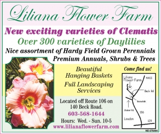 New Exciting Varieties Of Clematis