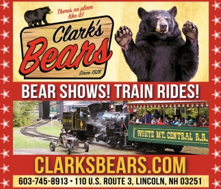 Bear Shows! Train Rides
