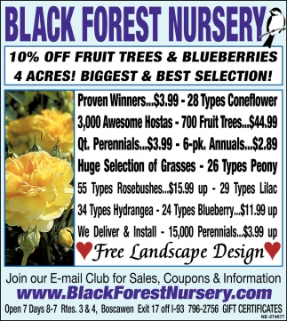 10% Off Fruit Trees & Blueberries