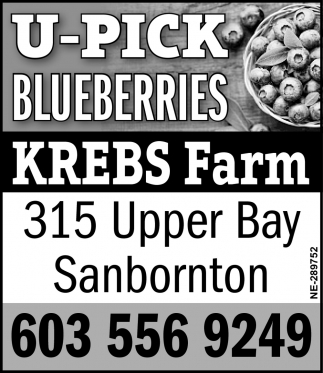 U-Pick Blueberries