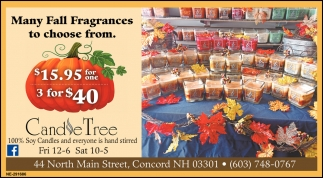 Many Fall Fragrances To Choose From