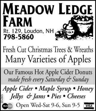 Many Variety Of Apples