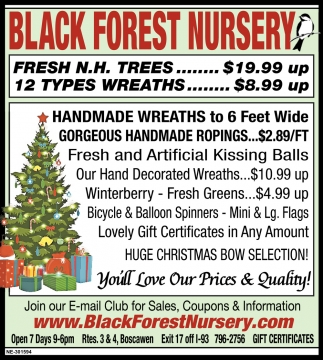 12 Types Of Wreaths