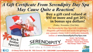 A Gift From Serendipity